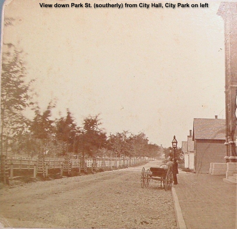 Park St. looking (southerly) from City Hall City Park on left (Horse & buggy by street lamp)